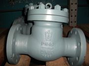 Клапан обратный 19с53нж  (Производство Россия)