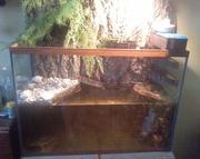 Срочно продаю террариум/аквариум